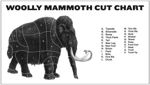 woolly-chart-528x300
