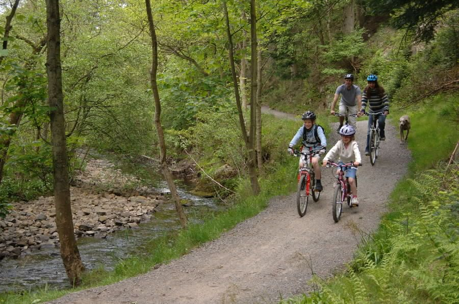 Family cycling on the Bedburn Beck. Grove Link Trail. Hamsterley Forest. Kielder FD